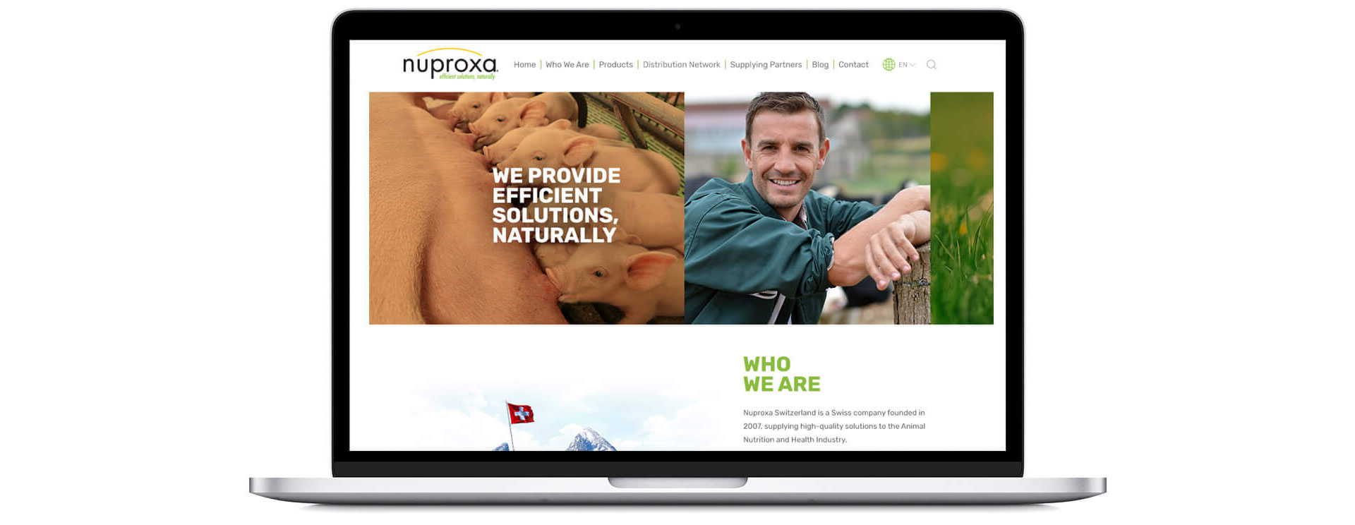 Website Nuproxa